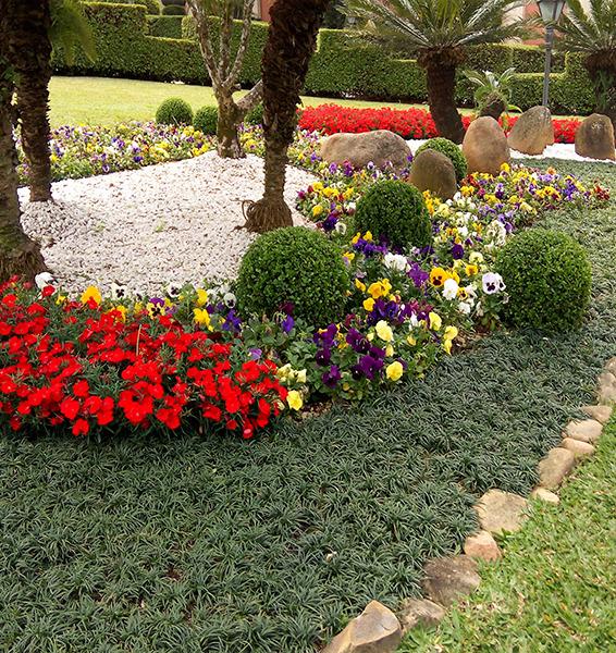 Verde Ideal | jardinagem e paisagismo